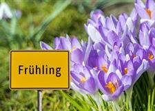 诗歌选读——春天