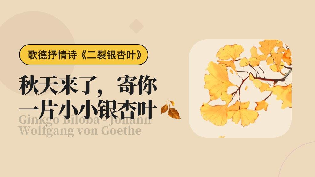 🍂 秋天来了,寄你一片小小银杏叶
