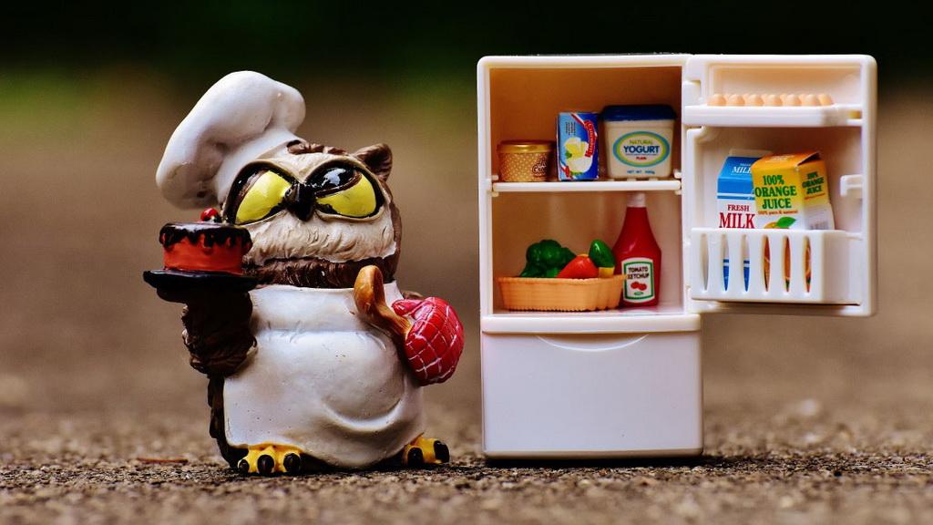 """如何一步步將食物藏進""""家里的北極"""""""