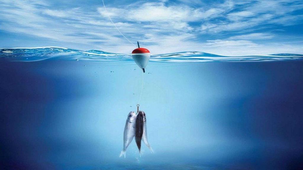 保護海洋資源:吃魚也要負責任的~??