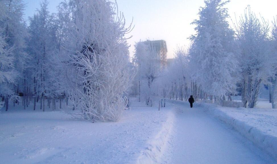 今天,Destination Francophonie带你到西伯利亚看看~